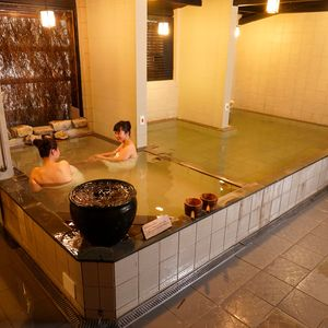 The public Green Sulfur Hot Spring 50% discount
